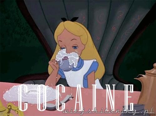 alicja i kokaina